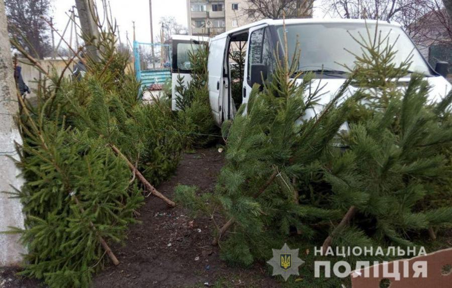 Полиция провела рейды по елочным базарам Харьковщины