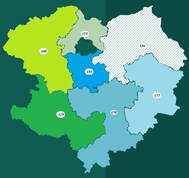 Новость о местных выборах