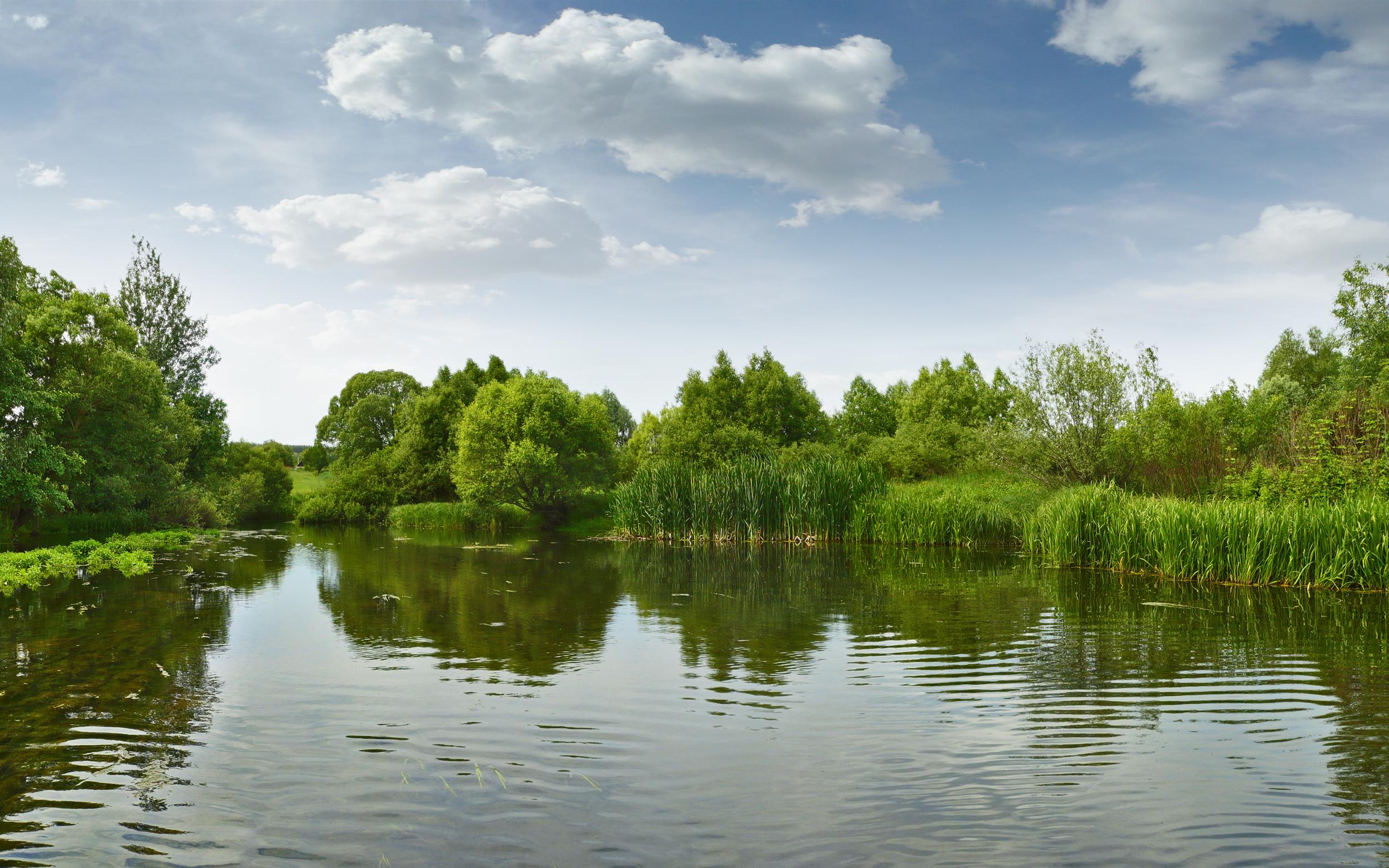 Власти Краснограда спасают речку