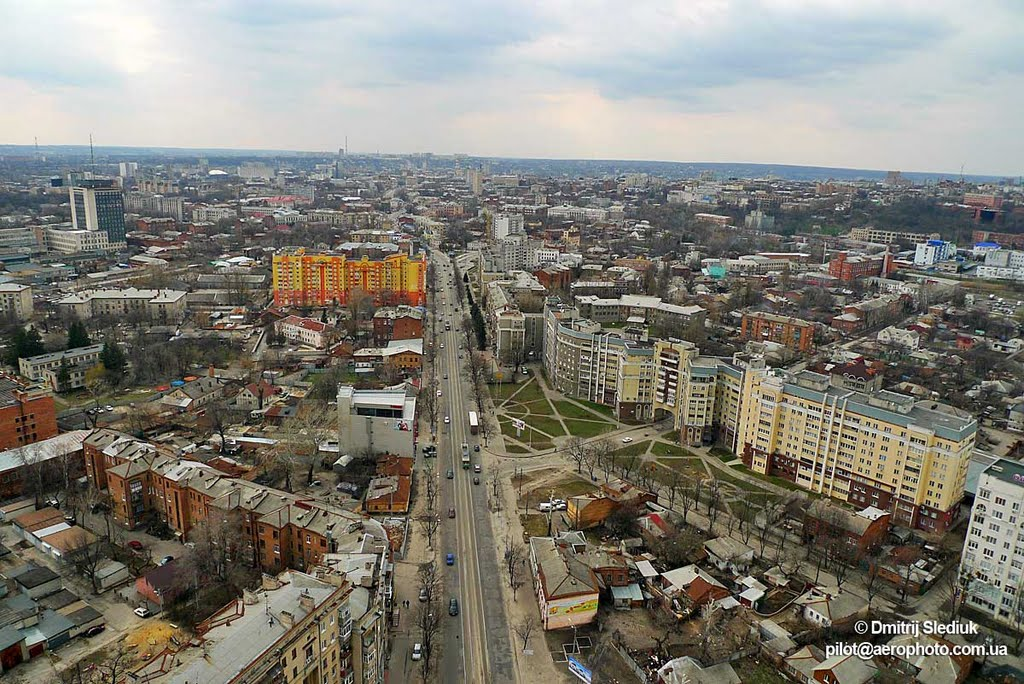 Нет Московскому проспекту. Новая петиция