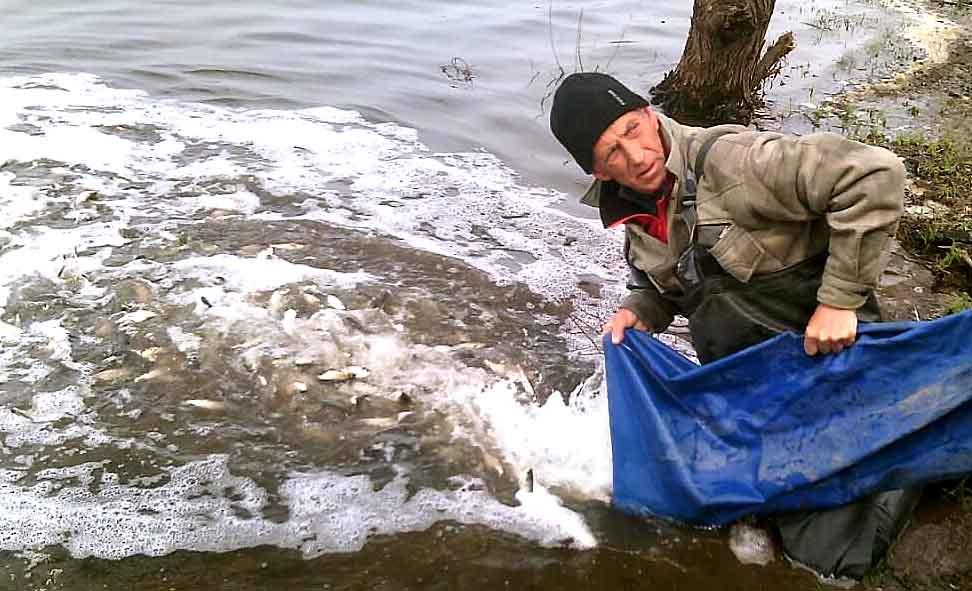 В трех районах Харьковской области стало больше рыбы