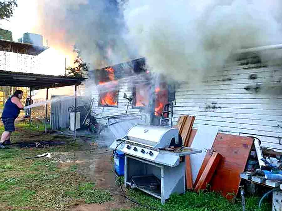 Мыши сожгли дом медсестры