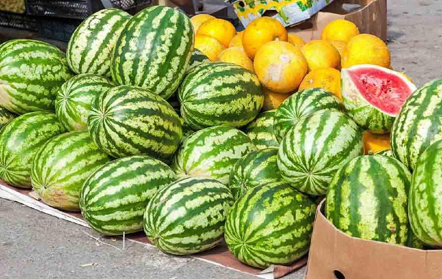 В Херсонской области арбузы продают по 70 копеек за килограмм