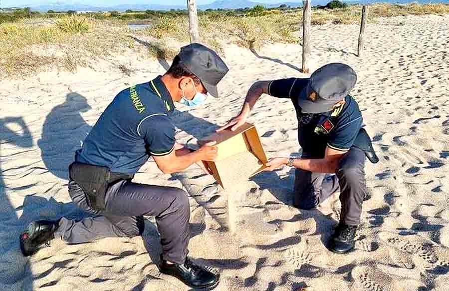 Штраф 1000 евро за бутылку песка с пляжа